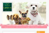 DOG SALON LOTUS(ドッグサロン ロータス)サイト